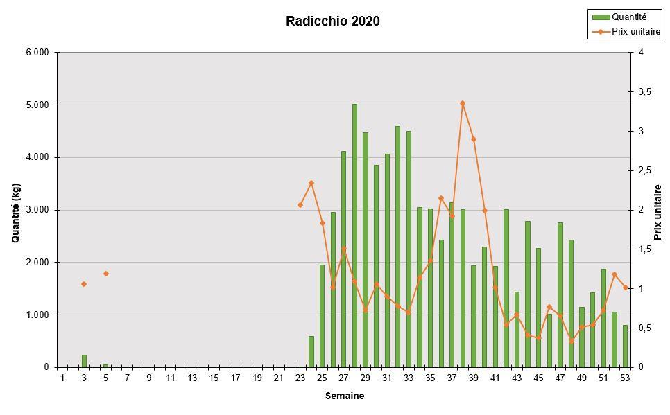 Radicchio 2020