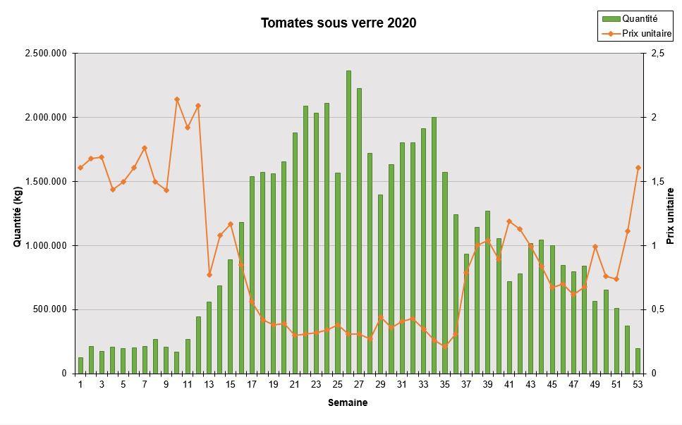 Tomate vrac sous serre 2020