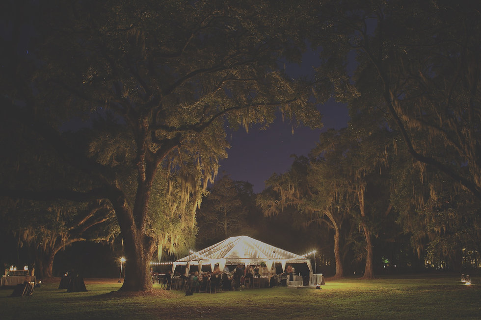 Grove of trees at night with a small party tent with lights