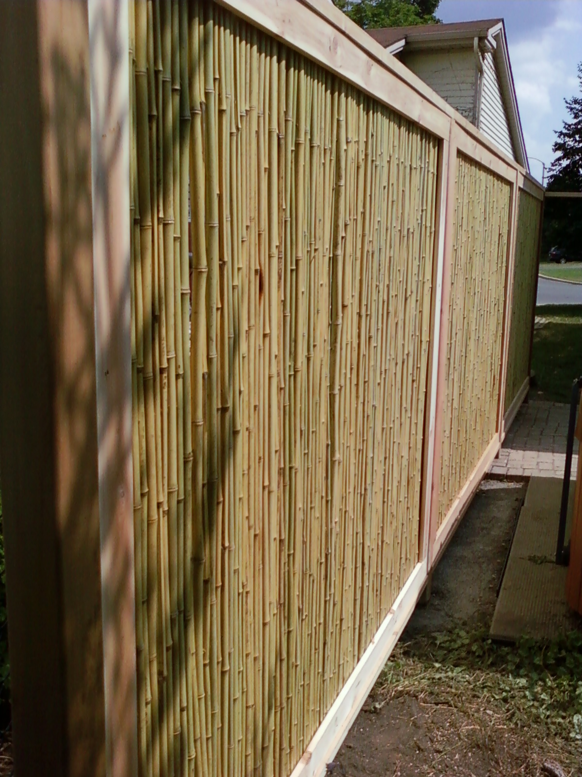 Bamboo Privacy Panels 2