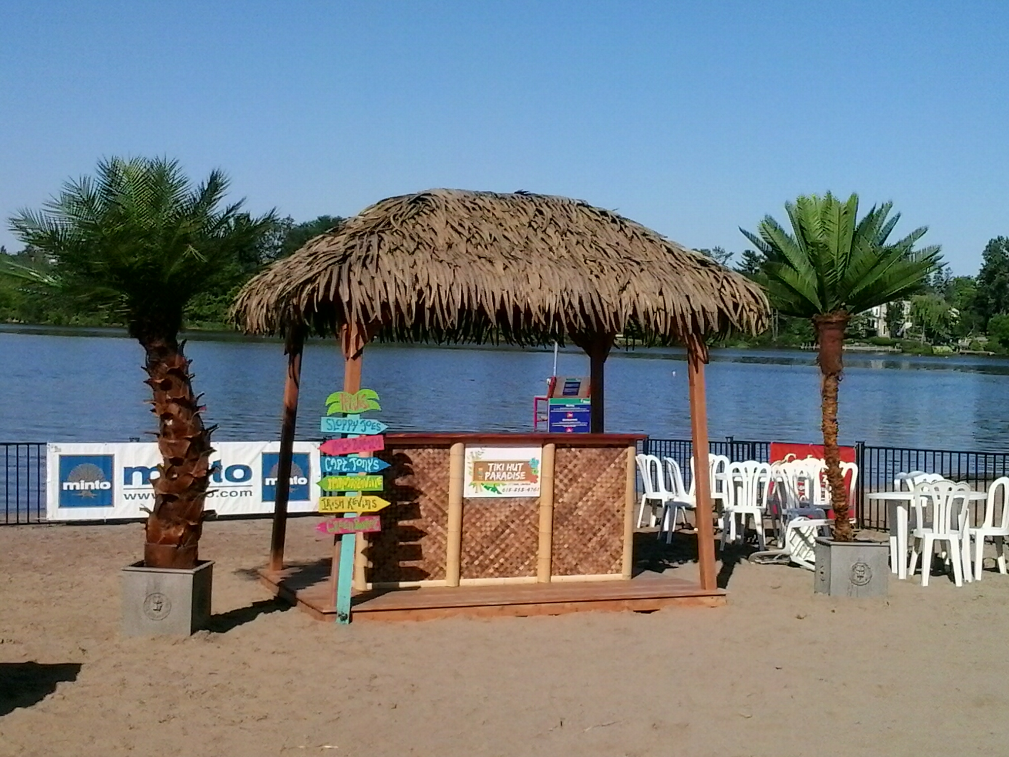 Polynesian Tiki Hut Kit and Custom Bar with Palms on Beach