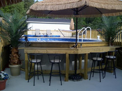 Pool Side Bar & Palm 2