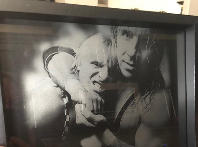 Bret and Owen Hart
