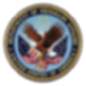 dva logo.jpeg