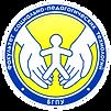 ФСПТ БГПУ.png