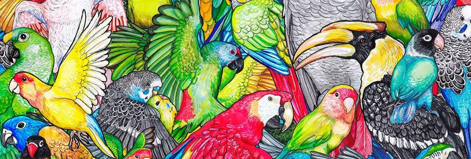 Póster el mundo de las aves