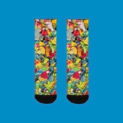 calcetines-ilustracion-loros-empeine