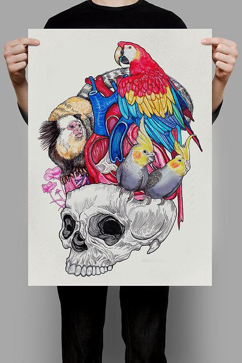 Poster Vanitas