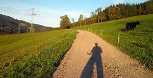 Plateaupanorama Tollinghöhe