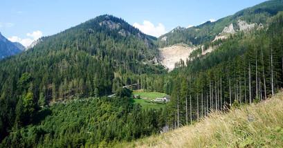 Blick zum Silbersberg
