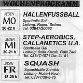 1990 wochenprogramm hp.jpg