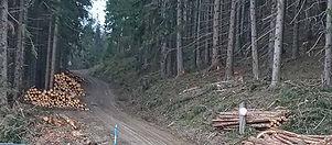Einfahrt Hohe Rötz - Silbersberg