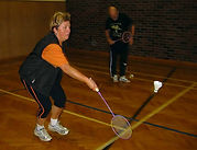 2003 badminton 9 hp.jpg