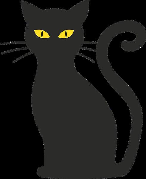 cat-1775543_1280.png