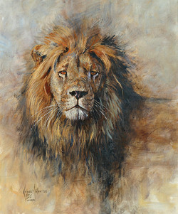 LN 056 LIONHEAD'
