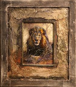 LN 087 'LION STUDY'