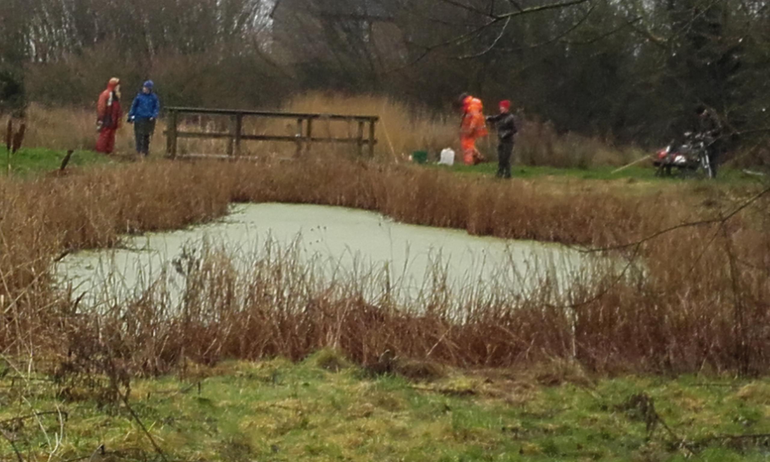 Saltcote pond
