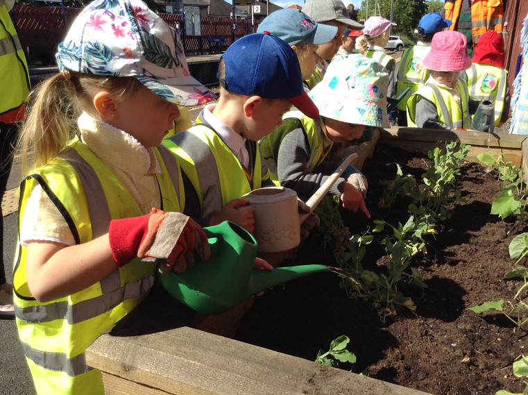 Young gardeners at work