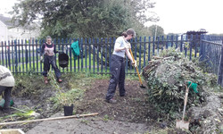 Clearing the surrounding area