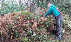 Huge habitat pile