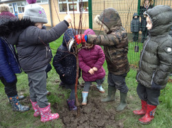 Great Wood children planting trees