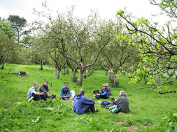 Having a break in the orchard