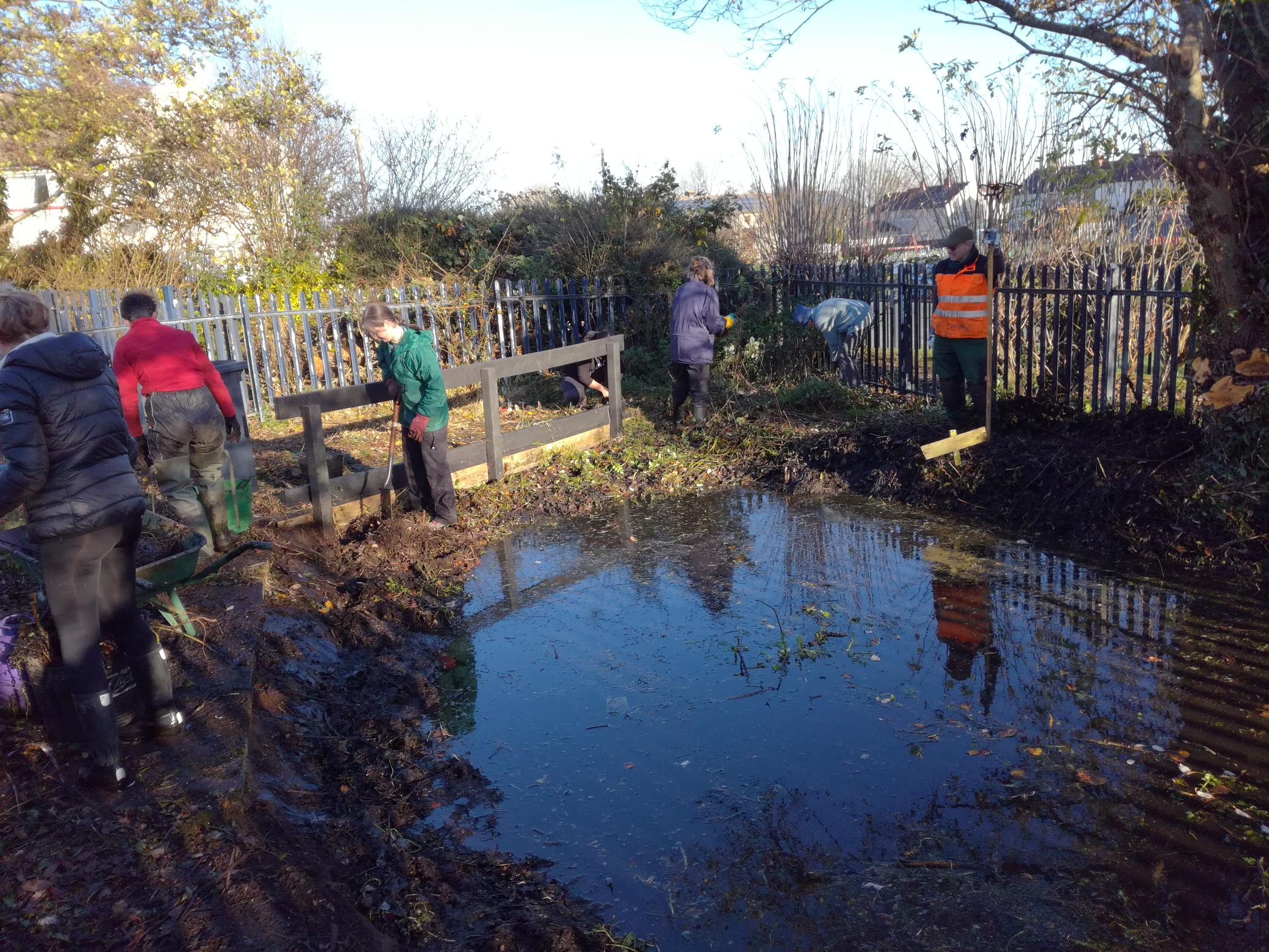 Clearing the old pond