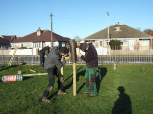 Strong stake to support new tree