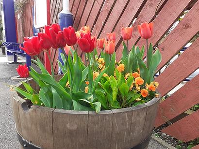 Tulip tub