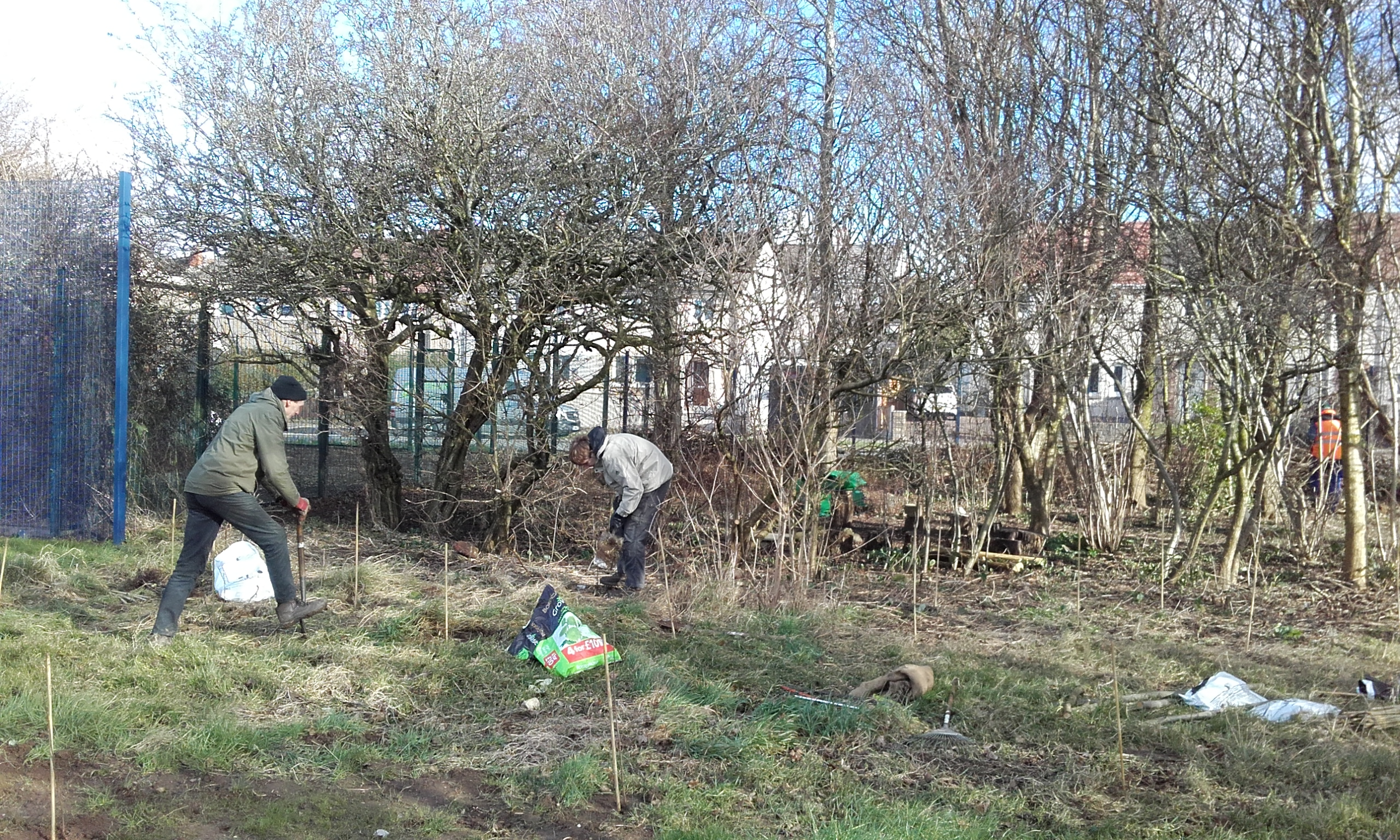 Extending the copse
