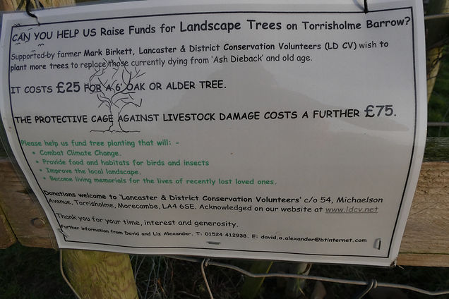Funds for trees