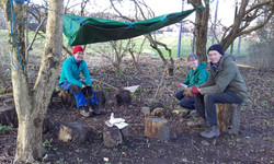 Handy shelter in copse!