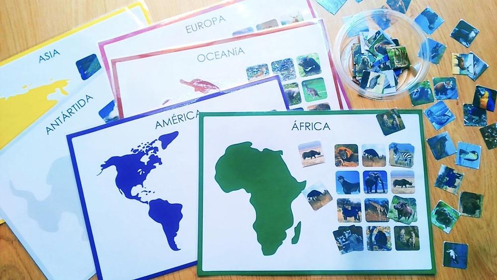 Animales continentes1