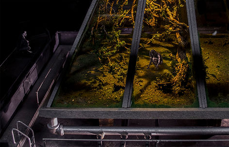 scale model of the story setting: inside of an abandoned stage house