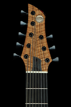 NGCo Djudge headstock