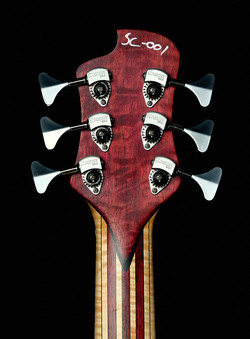 NGCo SOC headstock back