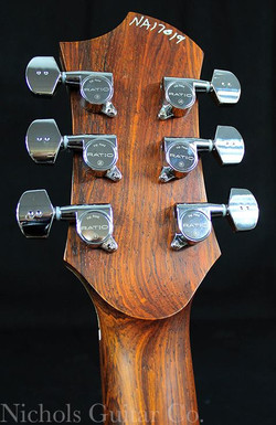 NGCo headstock back