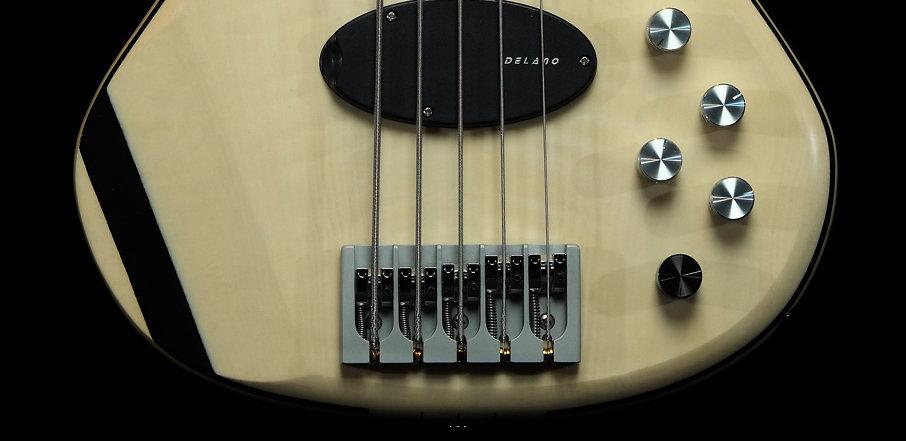 NGCo Bass.jpg