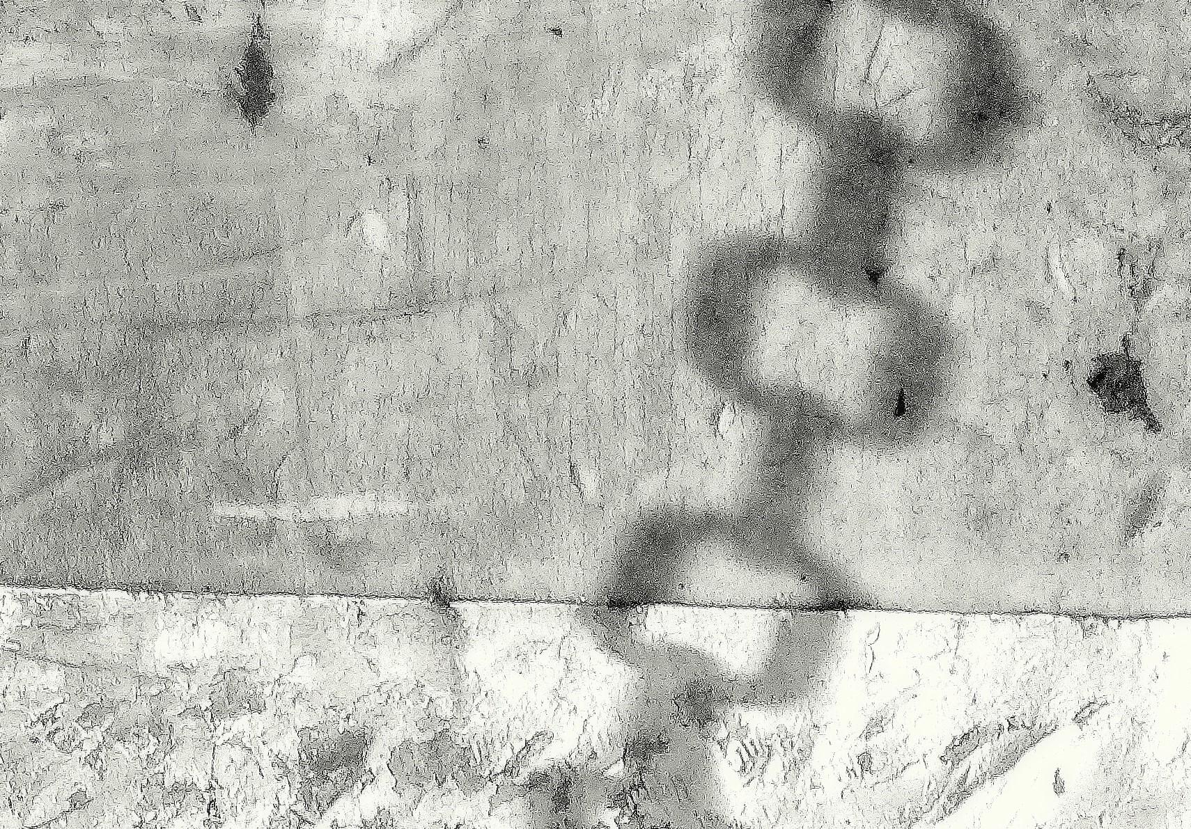 enchainé_noir_et_blanc