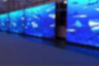 led-video-display-wall-250x250.jpg
