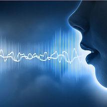 Sound Masking / Speech Privacy