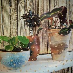 #stilllife #decor #greenlover #greenterior #plantbabies #drifthanginggardens #aalstaanmijligt