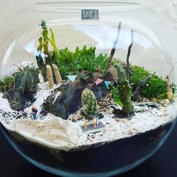 #holidayfeeling #boho #bohobeach #cactus #terrarium #party #familyfeel #greenterior #kidsandlovers