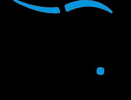 Eagle ProSix logo