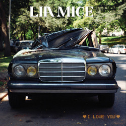 liamice_iloveyou