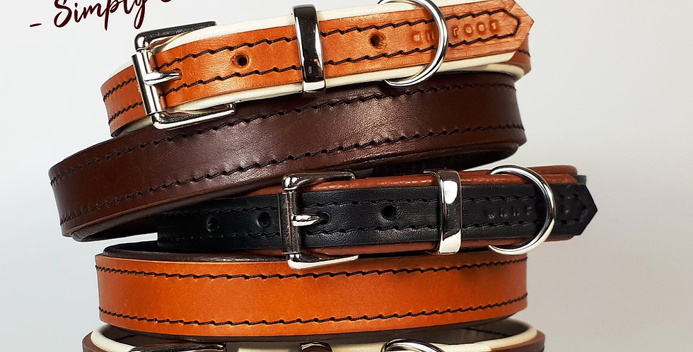 Padded Leather Buckle Collars:  'Simply Chic' [Big dog]
