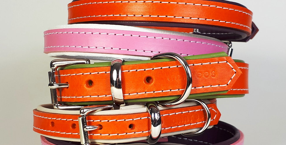 Padded Leather Buckle Collars:  'Modern Groove'