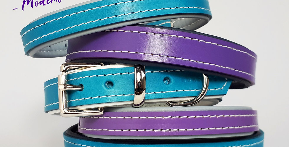 Padded Leather Buckle Collars:  'Modern Groove'  [Big dog]
