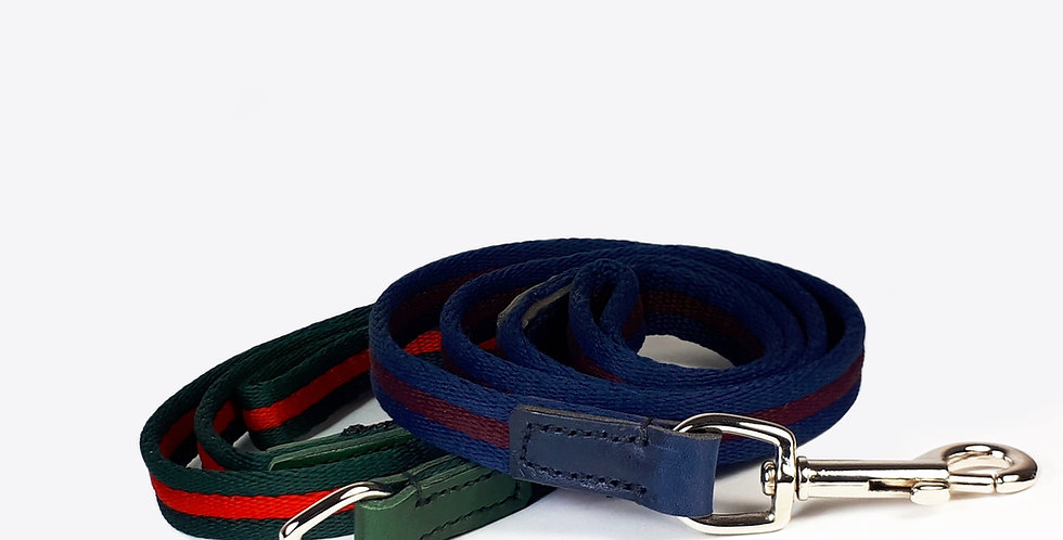 Airweb & Leather Clip Leads: Stripy