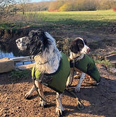 Working Dog Coats [1].jpg